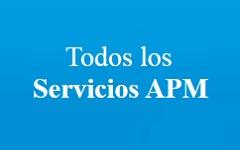 Servicios APM